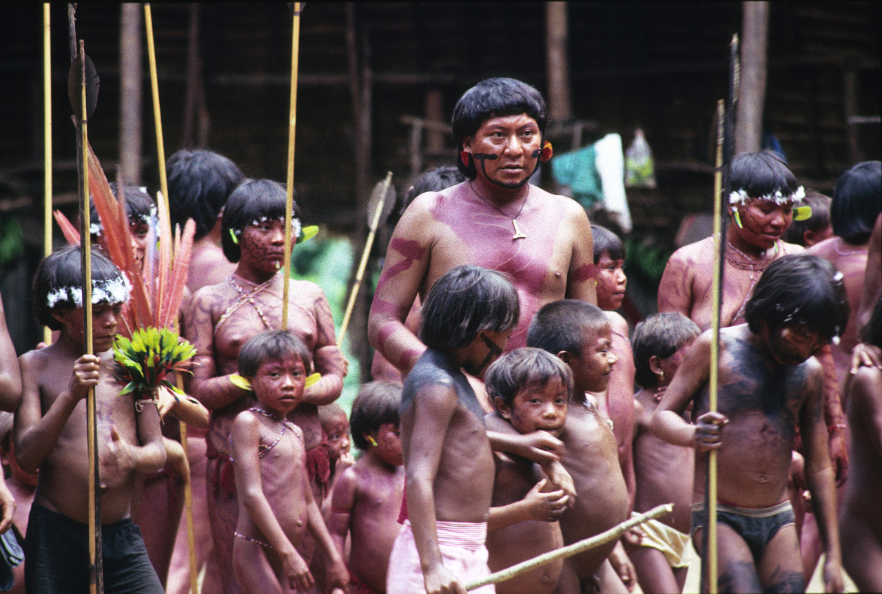 the yanomamo of the amazon basin Yanomamo 2 the yanomamo the yanomamo, also known as the yanomami and yanomama, is a primitive, deep jungle tribe of indians located in the amazon basin, which consists of both southern venezuela and northern brazil they are considered to be one of the most primitive and culturally intact people known to the world today.